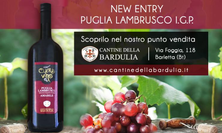 Puglia Lambrusco Vino Bardulia