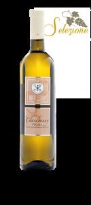 chardonnay vino di puglia